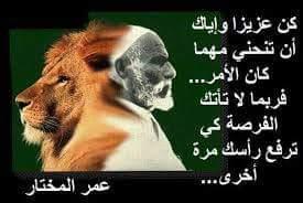 FB_IMG_1537470773188.jpg